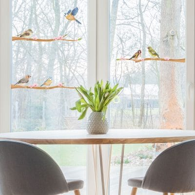 Spring bird window stickers perfect for decorating your windows