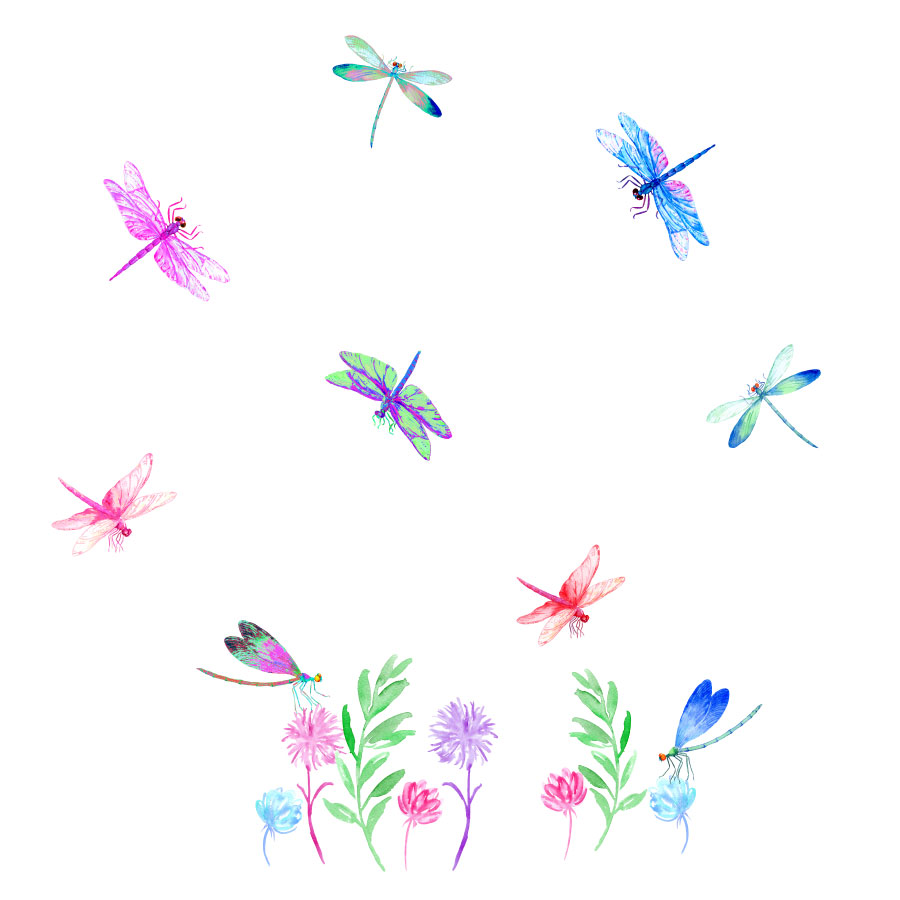 Dragonfly window stickers on a white background