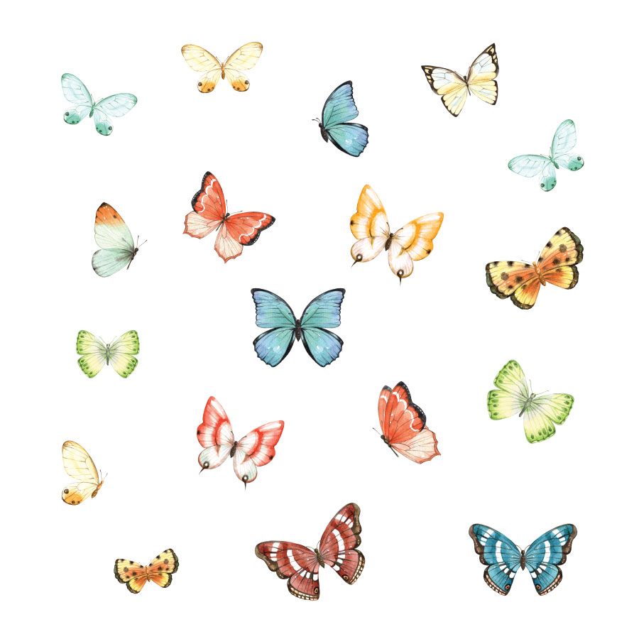 Butterfly window stickers on a white background