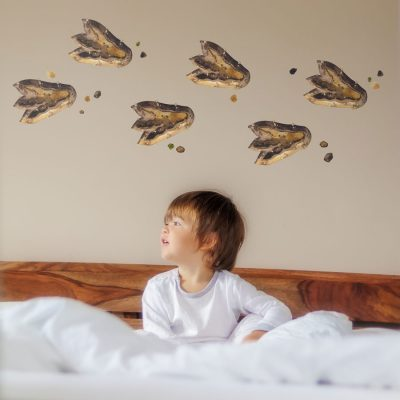 Dinosaur footprint wall stickers perfect for adding to a dinosaur themed bedroom or playroom