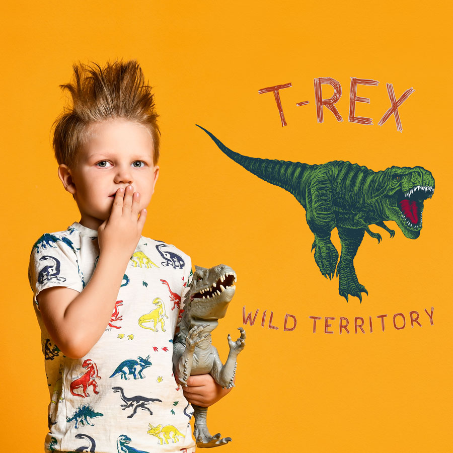 T-Rex wild territory wall sticker (Regular size - multicolour) on an orange wall perfect for a creating a modern dinosaur themed bedroom
