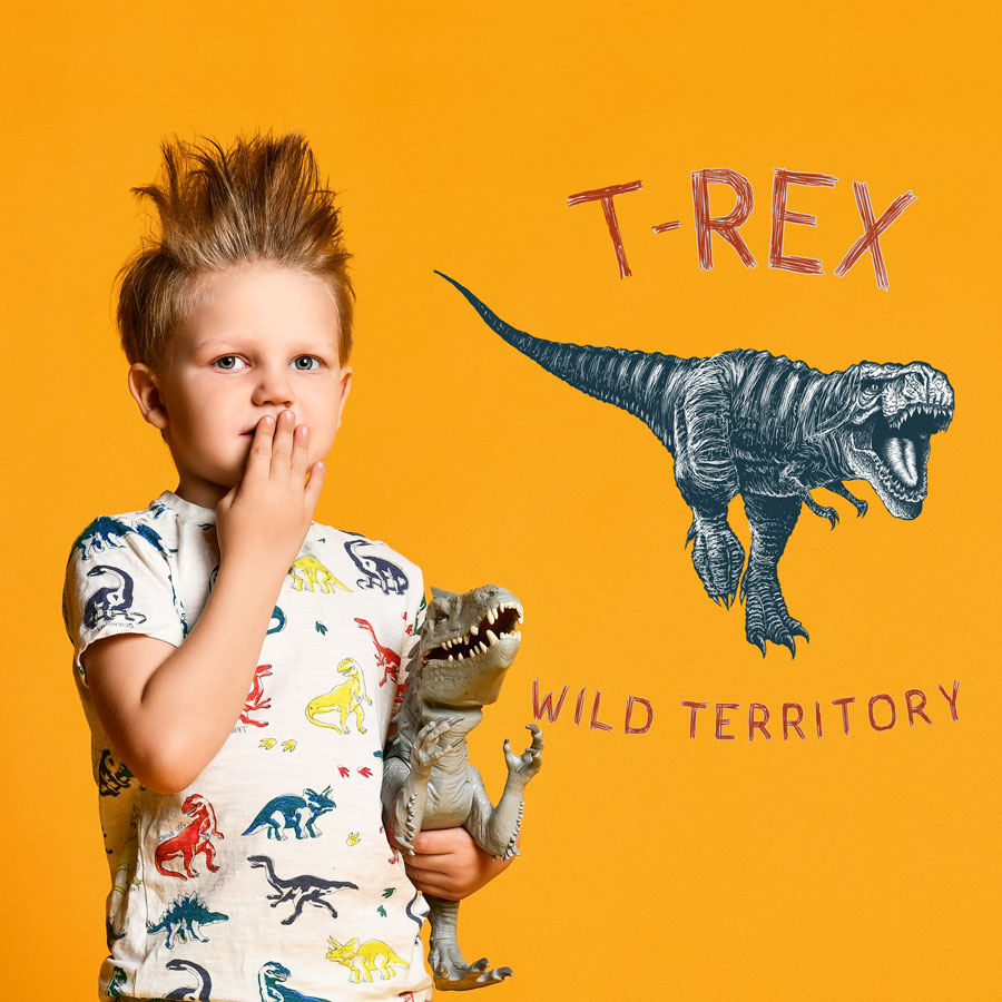 T-Rex wild territory wall sticker (Regular size - monochrome) on an orange wall perfect for a creating a modern dinosaur themed bedroom