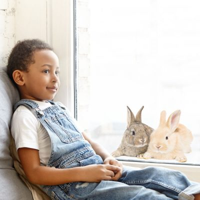 Fluffy bunnies window stickers perfect for decorating your child's windows this Easter