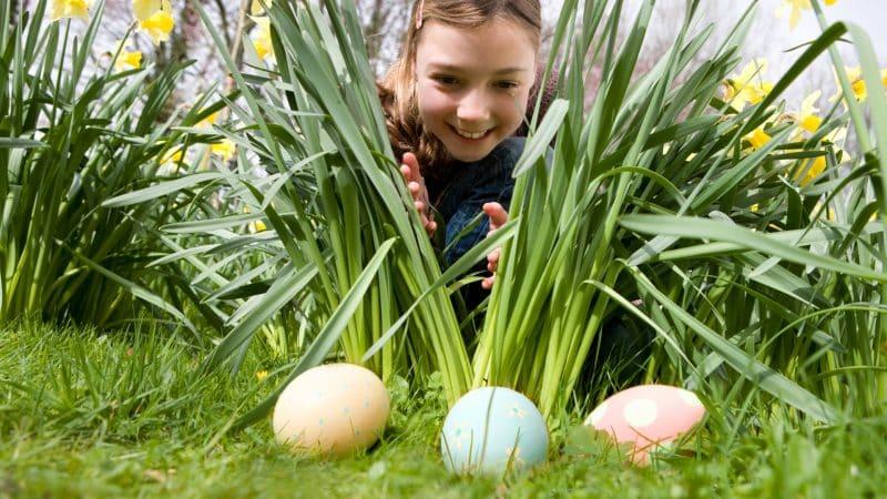 easter-egg-hunt-kids-photo